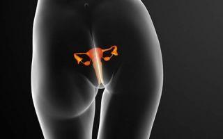 Зачем проводиться пересадка парных половых желез