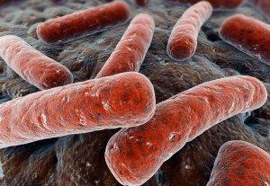 Заражение микробактерия